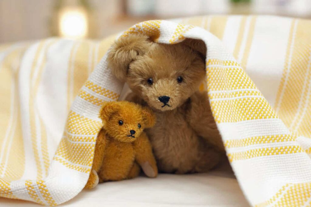 teddy teddies care love